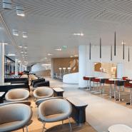 Plafond professionnel en lames aluminium